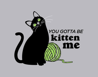 You-Gotta-Be-Kitten-Me